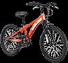 Diamondback Cobra 20 Inch Jr Boys Mountain Bike