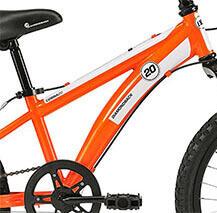DB Cobra Bike for Junior Boys Frame